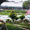 Poly Plastic Green House