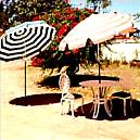 Terrace Umbrella