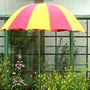 Beach Umbrella With Colored Finish