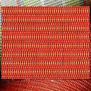 Mildew Resistant Designed Fabric