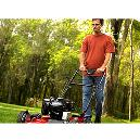 Riding Mower or Lawn Tractor