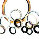 Oil Seals With High Tensile Strength