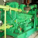 Compressed Natural Gas Based Engine Operated Power Plant