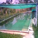 Shed Net for Swimming Pool