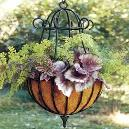 Decorative Garden Hanging Baskets
