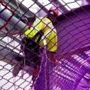 Safety Net for Industrial Worker