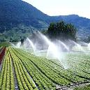 Fabricated Easy Useable Irrigation Sprinkler
