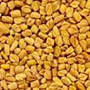 Natural Aromatic Fenugreek Seed