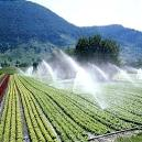 Rust Resistant Agricultural Irrigation System