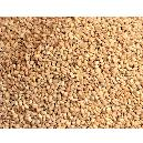 Hygienically Processed Sesame Seeds