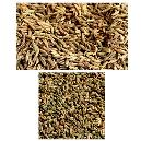 Hygienically Packed Cumin Seeds