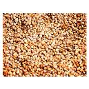 Vitamin B Enriched Whole Millet