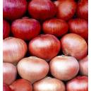 Nutrition Enriched Red Onion