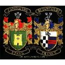 Colourful Embroidered Defend Badges