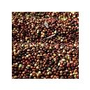Hygienic Aromatic Coffee Beans