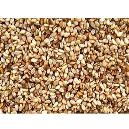 Proteins Enriched Sesame Seeds