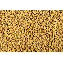 Hygienically Packed Fenugreek Seeds