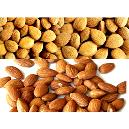 Hygienically Packed Shelled Almonds