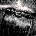 Smooth Braid Human Hair