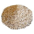 Hygienically Processed Sesame Seed