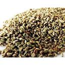 Hygienically Packed Ajwain Seeds