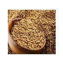 Coriander Seeds With Nutritional Properties