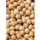 Hygienically Processed Yellow Peas