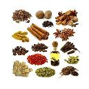 Hygienically Packed Pure Spice
