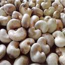 Hygienically Packed Raw Cashew Nut
