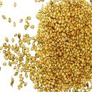 Hygienically Packed Coriander Seed