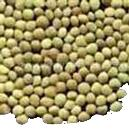 Hygienically Packed Green Lentil