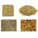 Industrial Grade Poultry Feed