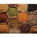 Hygienically Packed Nutritious Pulses