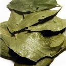 Hygienically Packed Dehydrated Curry Leaf