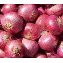 Hygienically Packed Red Onion
