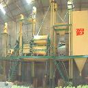 Colour Sorting Plant
