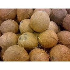 Hygienically Packed Fresh Coconut