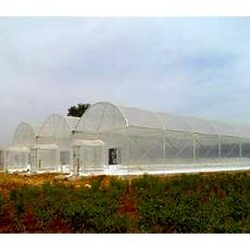 Fire Retardant Greenhouse Roof Cover