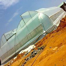 Weather Resistant Naturally Ventilated Greenhouse