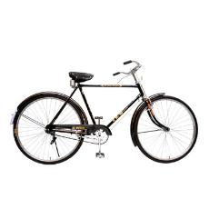 Electric Resistance Welded Steel Made Bicycle